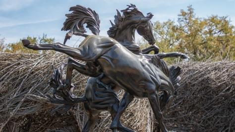 Sculpture Garden (6)