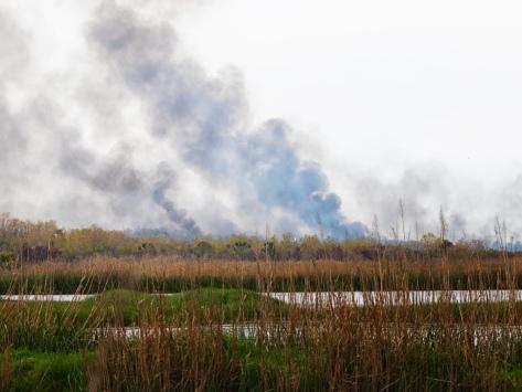 A Marsh Burning