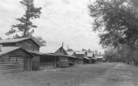 Cypress Methodist Camp (2)