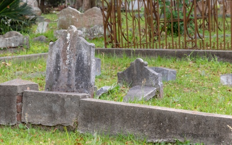 Up Close And Personal, Cemetery (3)