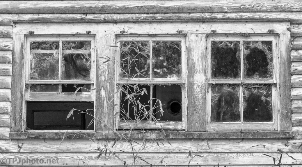 Windows To An Old Home