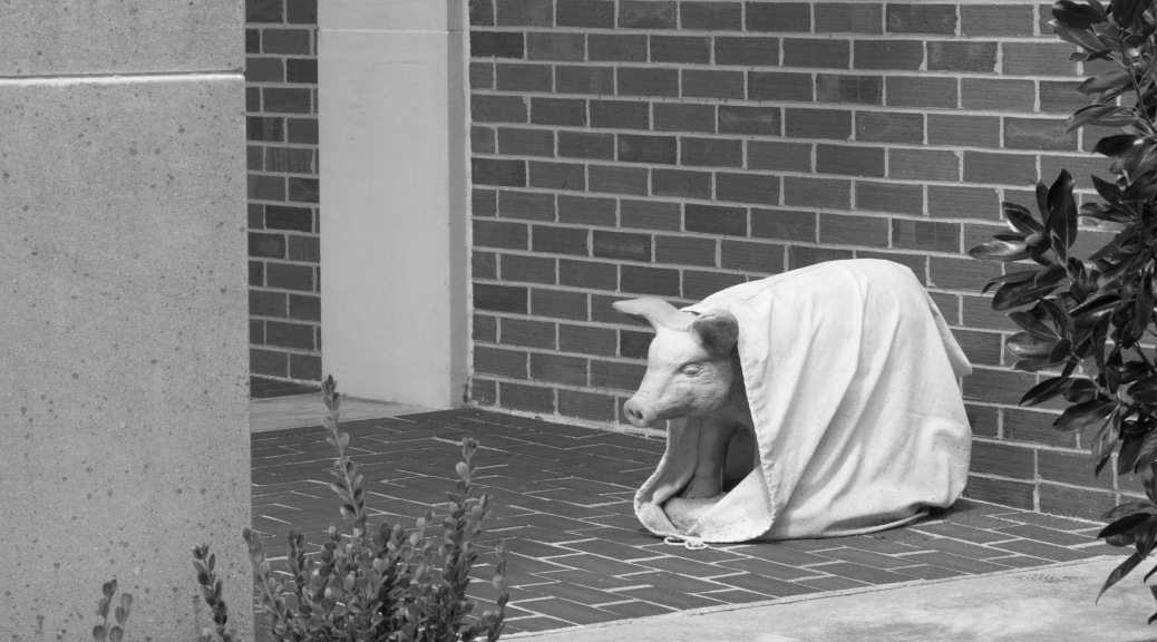Pig In A Blanket Maybe ?