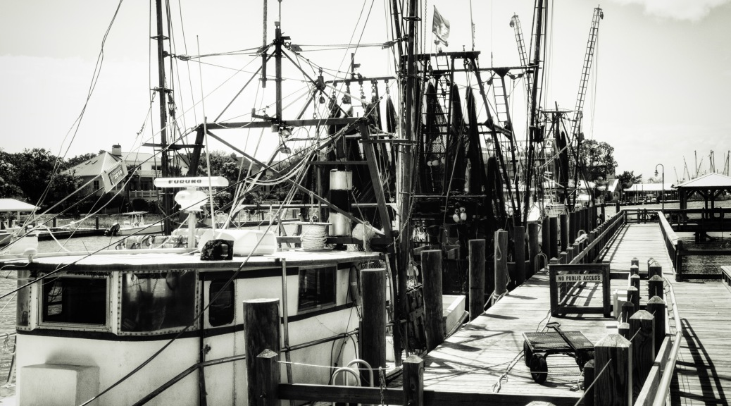 Shrimpers At The Docks