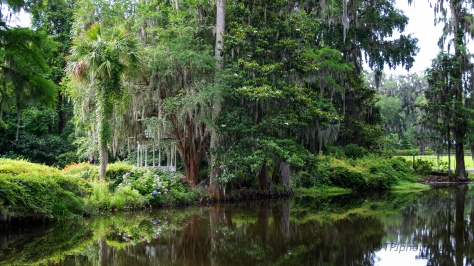 Plantation Pond