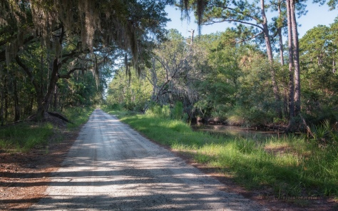 A Quick Look At A Wildlife Management Area