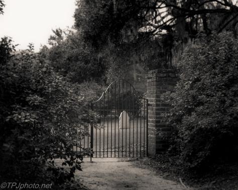 Cemetery, Trappist Monastery