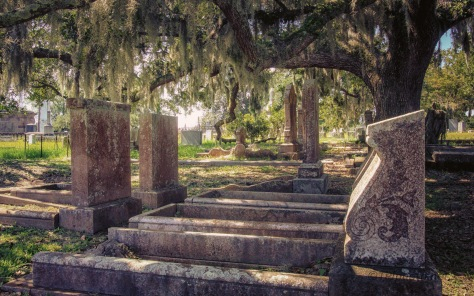 Shade In An Old Cemetery