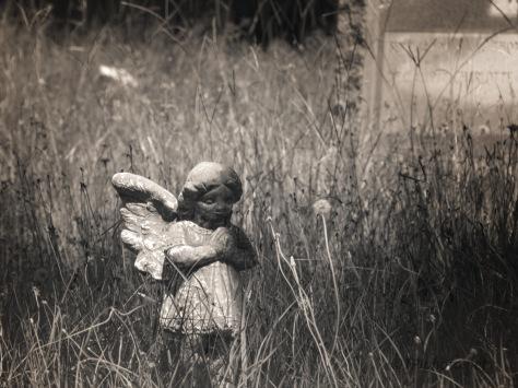 Found On A Walk, Cemetery