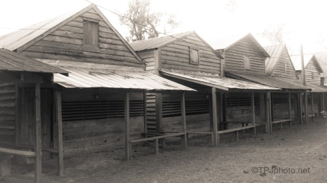 More Cabins (2)